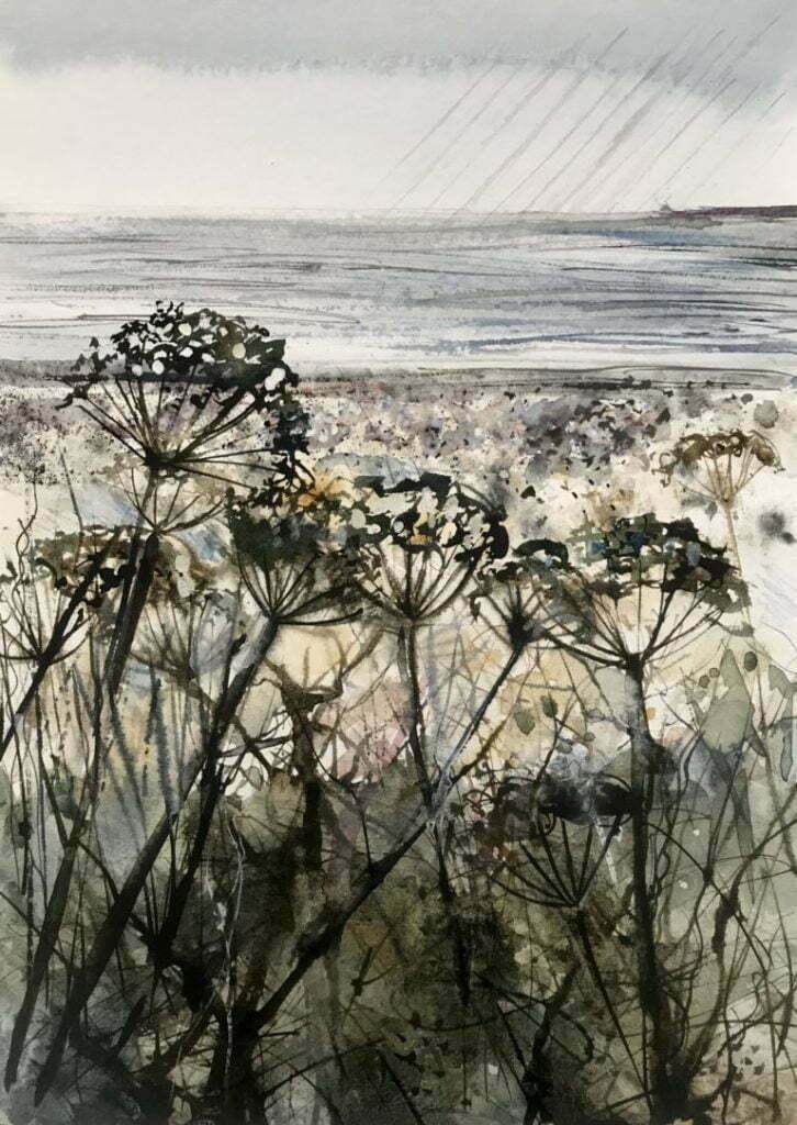 Fields of Devon by Kirsten Ellswood